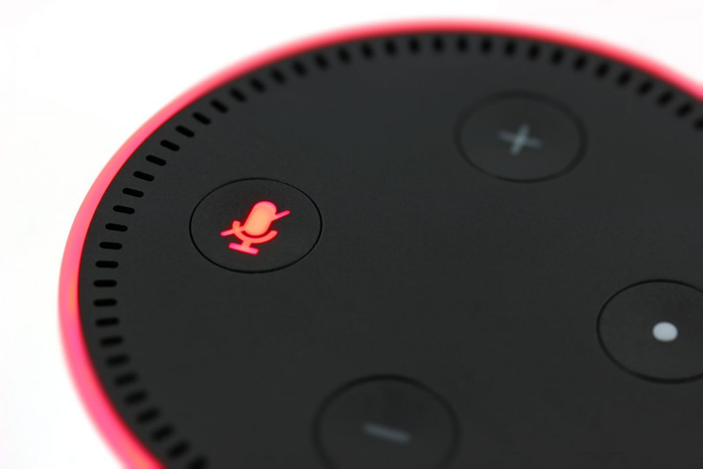 Voice Search Results